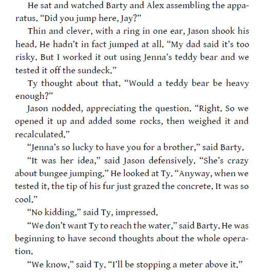 excerpt-rtk-bungee